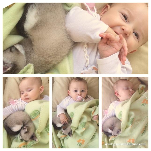 Lily e Shae dormindo